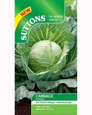 Suttons Cabbage Seeds F1 Sunta