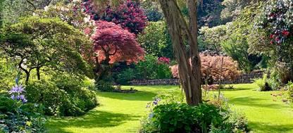 trees and shrubs surrounding a flower garden