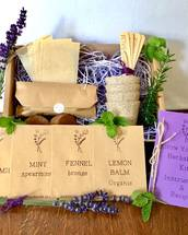 Grow Your Own Herbal Tea Kit (Free Parcel Postage)