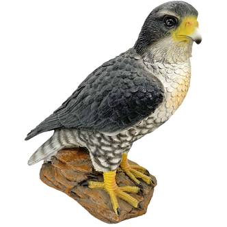 Hawk Bird Garden Ornament