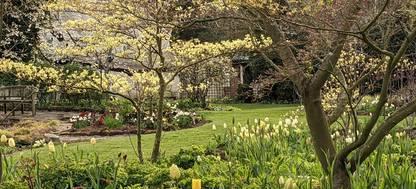 Spring planting scheme