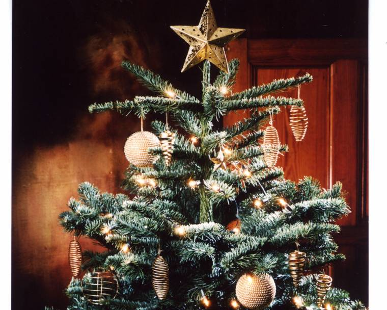 A decorated Noble Fir Christmas tree