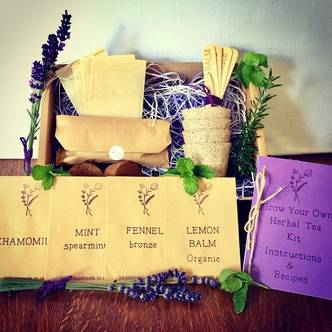 Grow Your Own Herbal Tea Kit