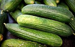 A photo of Cucumber