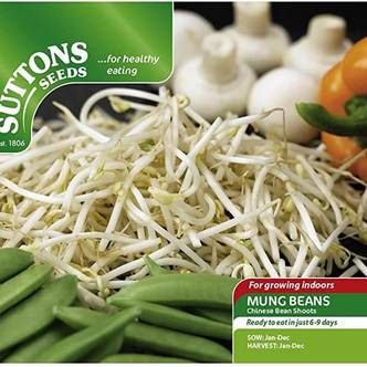 Suttons Mung Beans Seeds Chinesse Bean Shoots  Grow Indoors