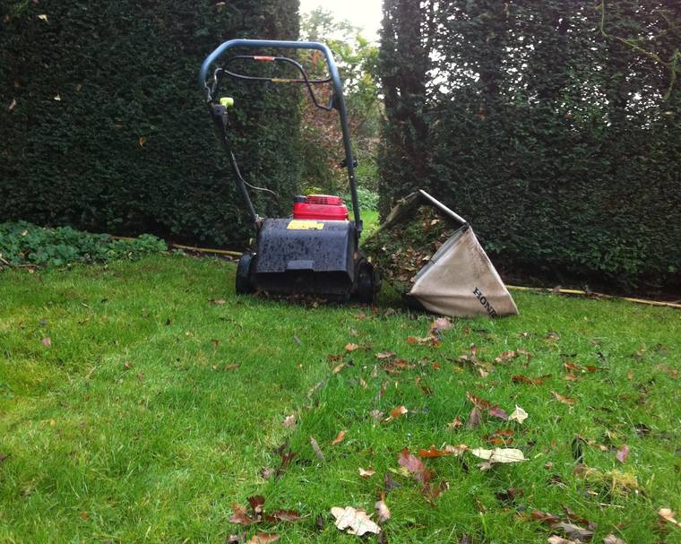 Leaf picking with a mower