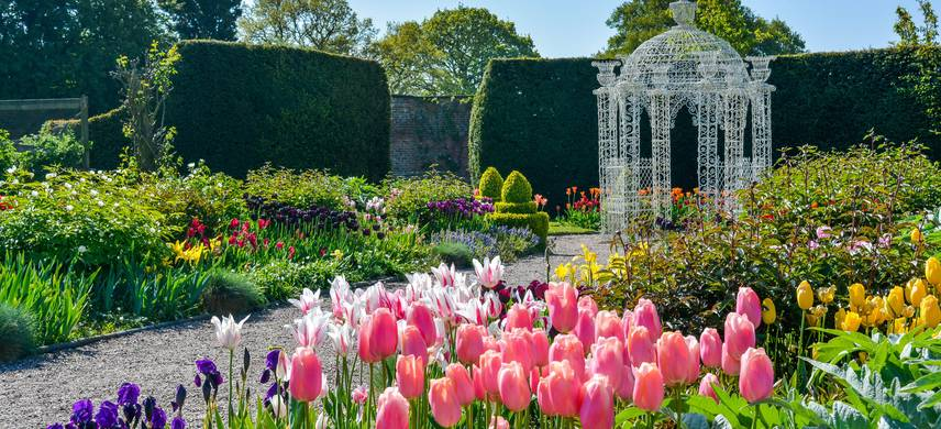 Tulips and arbour in the kitchen garden at Arley Hall Cheshire