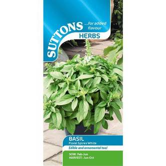 Suttons Basil Herb Seeds Floral Spires White