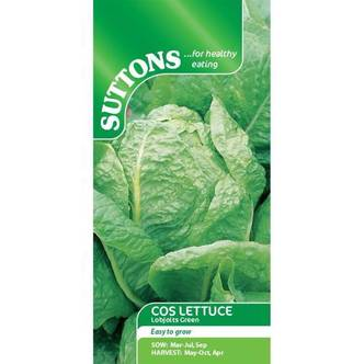 Suttons Cos Lettuce Seeds Lobjoits Green