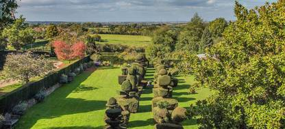 Topiary on top of a lush green field