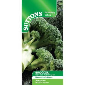 Suttons Broccoli Seeds Calabrese Autumn Spear
