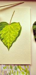 Celebrate Valentine's Day with a Green Heart