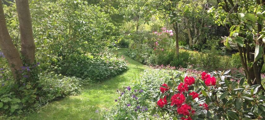 Cae Hir Garden
