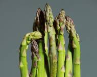 A photo of Asparagus