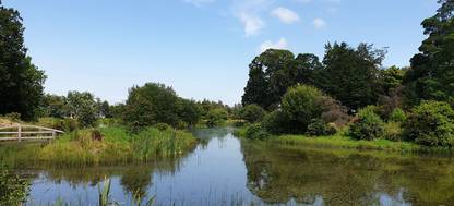 Waterway at Burgie Arboretum