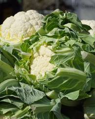 A photo of Cauliflowers