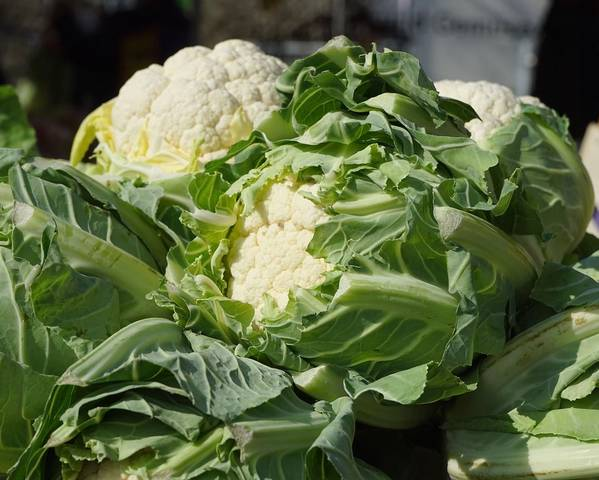 A picture of a Cauliflower