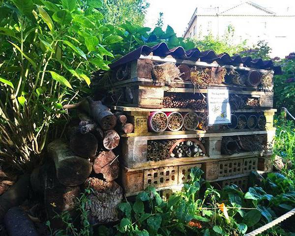 A large bug hotel is fantastic for wildlife gardening