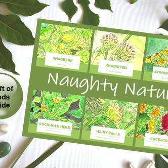 Naughty Nature - Greeting card with a gift of Cockscomb seeds