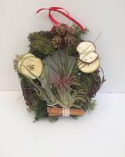 "Living wreath. 6"" ring with birch wood backing."