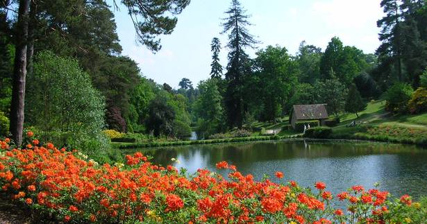 A colorful flower garden in front of a lake surrounded by trees