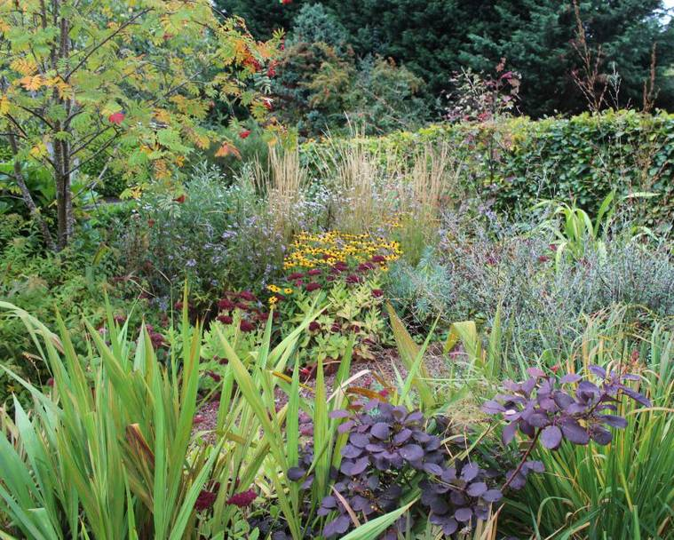 The Patient Gardener's flower garden in early autumn