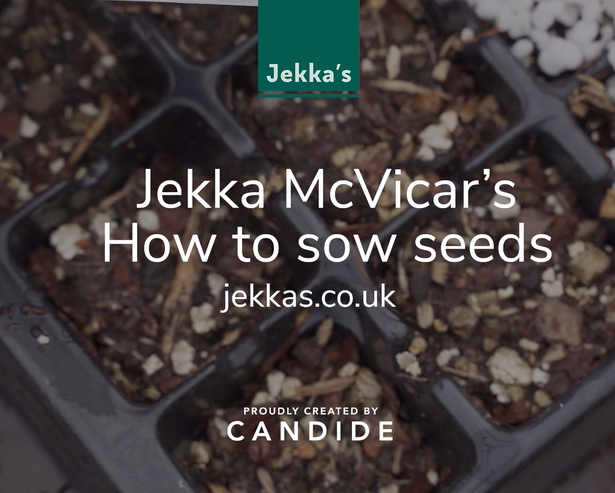 Jekka McVicar's How to Sow Seeds