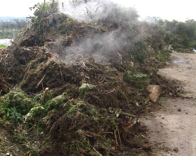 a steaming green garden waste pile