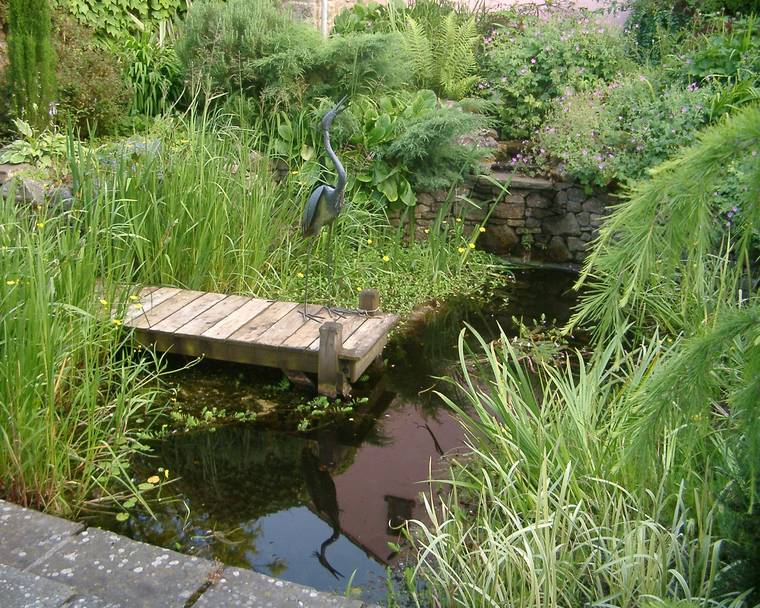 A wooden pier into a garden pond