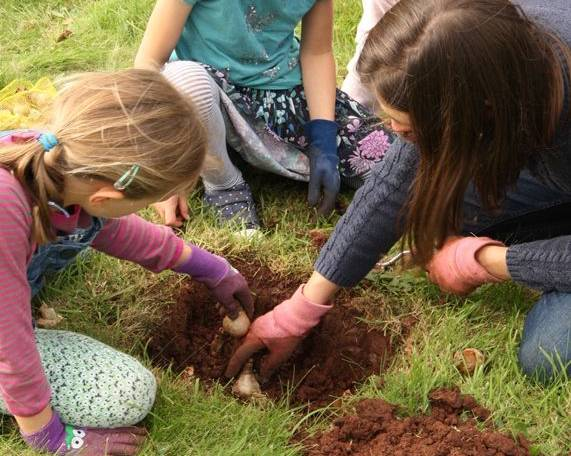 Children planting bulbs in the grass