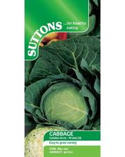 Suttons Cabbage Seeds Golden Acre Primo II