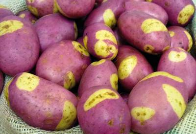 A pile of red skin potatoes
