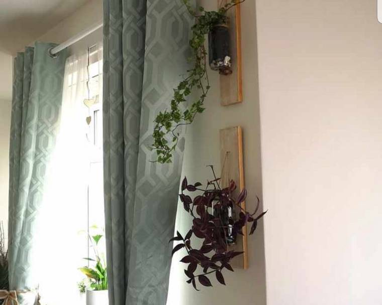 Hanging planters next to a window