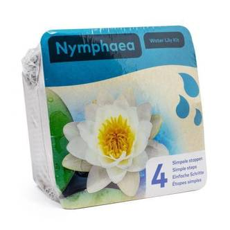 White with Yellow Centre Water Lily Easy Starter Kit Ready To Go Pack Includes Water Lily.