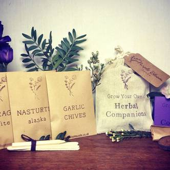 Grow Your Own Herbal Companions Kit