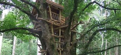 Treehouse at Nant y Bedd garden