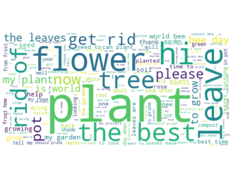 Word Cloud, using questions submitted to our Q&A Bot