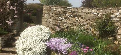 A large flower border at Hookshouse Pottery and Garden