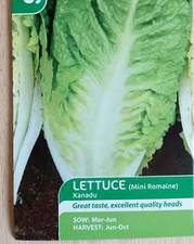 Suttons Lettuce Seeds Xanadu Mini Romaine