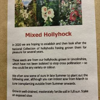 Mixed Hollyhock Seeds