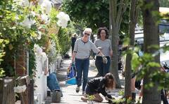 How to Make Your Street a Haven for Nature with Practical Tips from Urban Rewilders