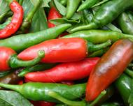 A pile of green and red Capsicum annuum peppers