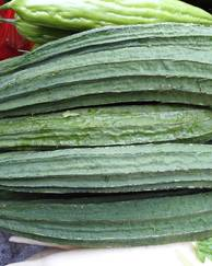 A photo of Ridge Gourd
