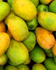 A photo of Mango