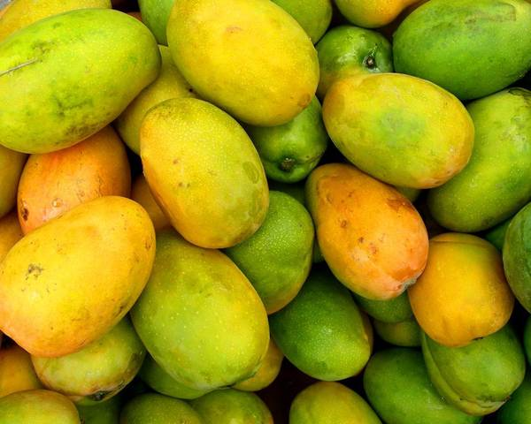 A picture of a Mango