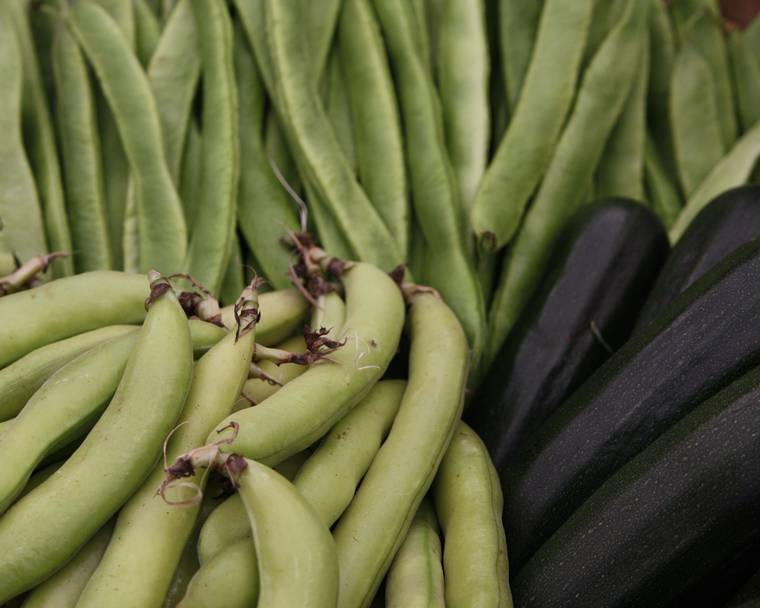 Broad and runner beans and courgettes