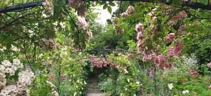 Flower archway at Aberglasney Gardens
