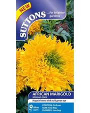 Suttons African Marigold Seeds Misson Giant