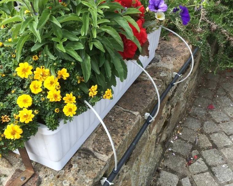 Drip irrigation of a flower trough