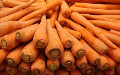 A photo of Carrot